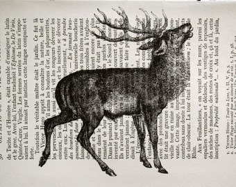 Deer Print on Vintage French Book Page - 5 x 7
