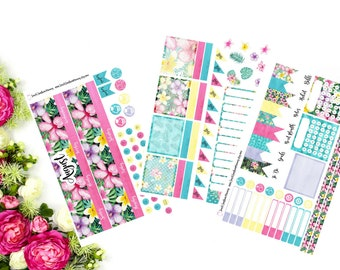MONTHLY Erin Condren August  Sticker Kit