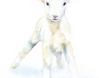 Baby Lamb Watercolor Painting - Large Print - 16 x 20 - Poster
