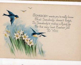 Vintage postcard - Easter postcard -  Easter Greetings  Vintage Postcard swallows, jonquils, unused