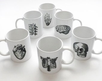 Anatomy gifts ceramic coffee MUGS doctor science skull brain anatomical heart party favors student medical teacher geek goth office nursing
