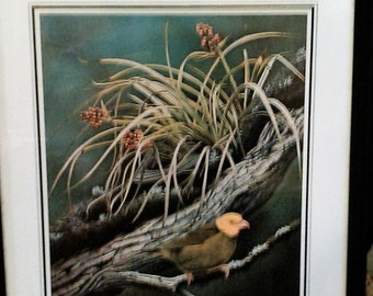 2 Vintage Framed Bird Prints, Audobon and H. Dougals Pratt.