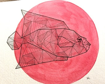 Watercolor and ink fish original