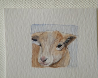 Miniature lamb painting,  original watercolor