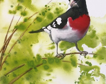 Original Watercolor Painting - Bird Painting - Rose Breasted Grosbeak - Bird Art - Wildlife Art - Home Decor - Wall Art - Fine Art