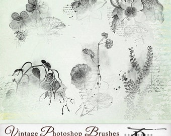Photoshop Brush, Vintage Digital Clipart, Vintage Photoshop Brushes v.6