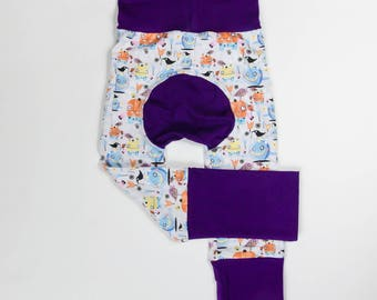 Monsters and Bird Friends and Purple/Pink/Charcoal Baby Big Butt Pants - Grow with me pants - Cloth diaper friendly - Toddler - Gift
