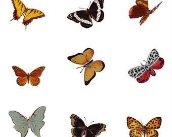 pretty butterflies, a vintage printable digital collage sheet no. .  517