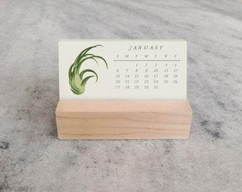 Air Plants 2019 Mini Desk Calendar | Tillandsia Mini Desk Calendar 2019 | Monthly Calendar, stocking stuffer