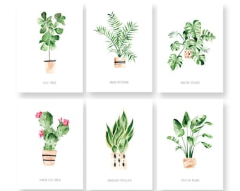 Set of 6 House Plants cards - Illustrated Cards - Botanical Cards - Postcards - House Plants assorted card set - Watercolor - Stationery