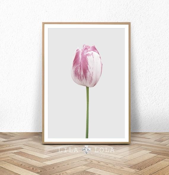 Tulip Wall Art Print, Flower Photography, Digital Download, Large Printable Poster, Pink and Grey Pastel Bedroom Decor, Modern Botanical