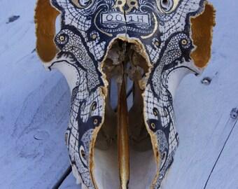 Hand Illustrated Sheep Skull
