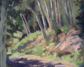 Escaping to the Aspen Vista Trail - Santa Fe - New Mexico - Original Oil Landscape Painting