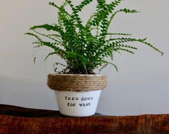 fern down for what Planter Pun