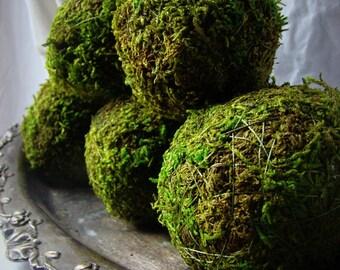 Moss Balls, 4'' Moss Balls, Green Decor, Green Balls, Moss Pomander