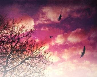 "Sky Photography, Cloud Photography, Vivid Art, Ambient Photography, Fine Art Photography, ""Morning Light"""