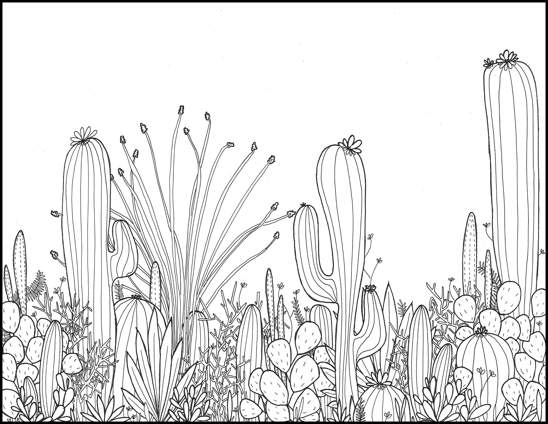 Perfecto Páginas Para Colorear Desierto Para Imprimir Foto - Dibujos ...