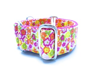 """Houndstown 1.5"""" Bright Garden Martingale or Buckle Collar Size Small through X-Large"""