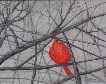 """Titled """"Winter Chill"""" Cardinal pencil drawing. Watercolor enhanced. Bird drawing. Graphite pencil. Acid free paper."""