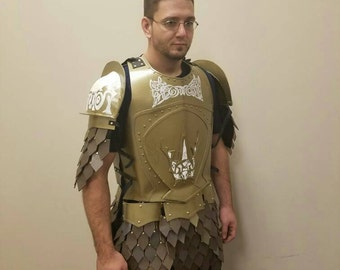 Game of Thrones Kingsguard Armour