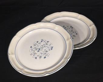 Vintage Dinner Plates, Avondale Stoneware, Covington Dinnerware, Decorative Garden Flower Theme Dishes, Blue & White Ceramic Plates