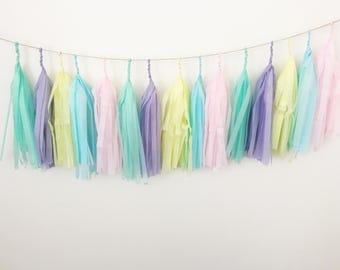 Pastel Rainbow Tissue Paper Tassel Garland/Pom Tassels/Party Garland/Party Tassels/Paper Banner/Party Decor/Balloon Tassels/Sign/Blush