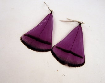 Feather Earrings Dyed  Purple Lady Amherst