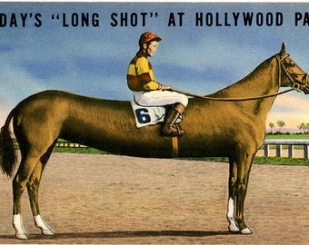 Hollywood Park Horse Racetrack Long Shot Exaggeration Inglewood California Vintage Postcard (unused)