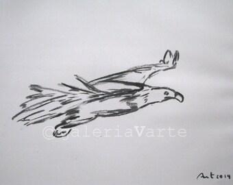 original charcoal drawing  - hawk - europeanstreetteam