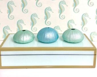Beach Decor - 3 Hand-Painted Natural Sea Urchins - Aqua and Mint - Wedding Decor Mermaid Party Coastal Nautical