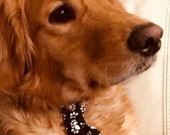 Dog Bowties and Ties