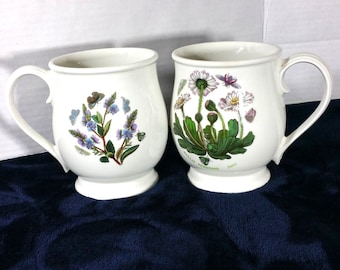 Set of 2 Potmerion The Botanic Garden made in Britain  coffee mugs cups flower