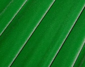 1 Yard Kelly Green Four Way Stretch Velvet Fabric