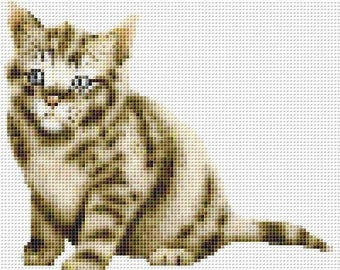Cross Stitch Pattern, Cross Stitch Patterns, Cross Stitch, Counted Cross Stitch, Cross Stitch Chart, Xstitchpatterns, Cross Stitch Kitten