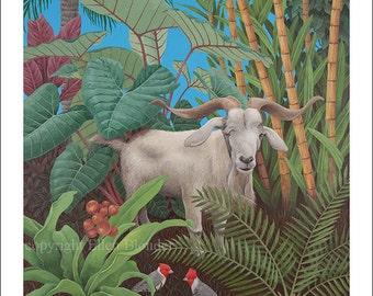 Kauai Goat with Cardinals, Large Giclee Print
