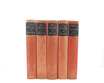 Pink Coral Books, Small Rustic Wedding Decor Centerpiece, Old Book Set, Decorative Books, Shabby Chic Book Decor Library, ANtique book Set