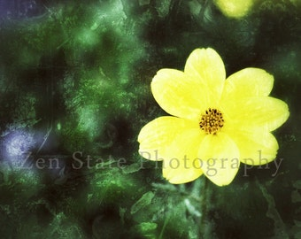 Yellow Wall Art Flower Photography Print Yellow and Green Floral Wall Hanging Unframed Photo Print Framed Print or Canvas Print Home Decor