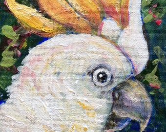 Parrot  Painting bird painting original art 5 x 7