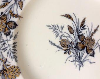 Wedgwood Clover Dinner Plate