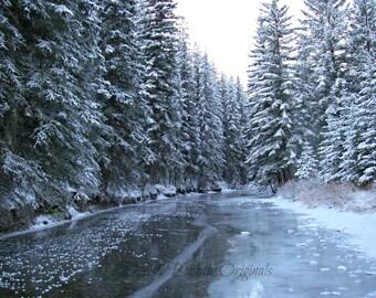 Dutch Creek, Alberta