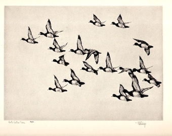 "1930s ""On The Eastern Shore"" No.50  Richard Bishop Duck Wildlife Art Vintage Print , Birds Duck Hunting Wildlife Art Natural History"