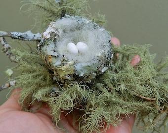 hummingbird nest on a branch handmade realistic bird's nest