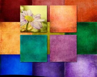 Fine Art Photoshop Textures: Grunge Color Wheel