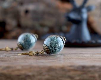 Moss dangle earrings, Teal moss jewelry, Blue greenish earrings, Terrarium jewelry, Glass orb earrings, Real nature earrings, Plant jewelry