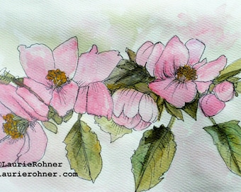 Pink Apple Blossoms Watercolor Blank Card Nature Art Illustration