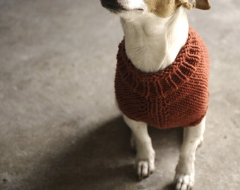 The Juno Jumper - a small dog sweater