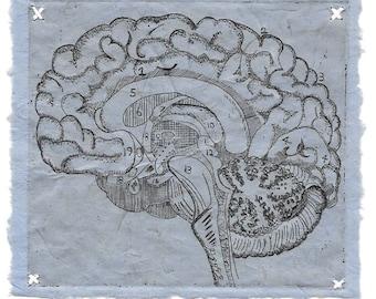 Logical Brain- Etching- Science Geekery Biology- 8 x 10-Monoprint-1 of 1