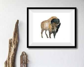 Bison art print of  original watercolor painting, wild life, animal art, American Buffalo print, woodland art, wild west, wild life art