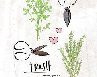 Fresh Herbs- Beautifully textured cotton canvas art print. Order as an 8x10 11x14 or 16x20 size.