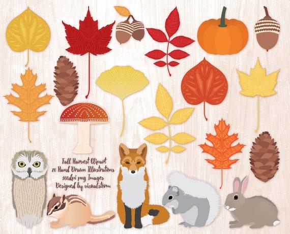 Woodland Animal Autumn Clipart Fall Scrapbook Graphics Foliage